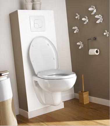 d co cuvette toilettes exemples d 39 am nagements. Black Bedroom Furniture Sets. Home Design Ideas