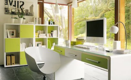 D co interieur bureau exemples d 39 am nagements - Deco bureau professionnel ...