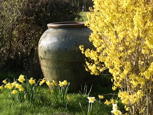 D co jardin jarre exemples d 39 am nagements - Jarre deco jardin lyon ...
