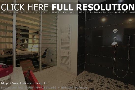 exemple déco salle de bain ouverte sur chambre
