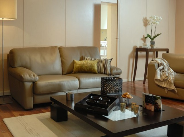 D co salon cuir beige exemples d 39 am nagements for Decoration salon cuir marron