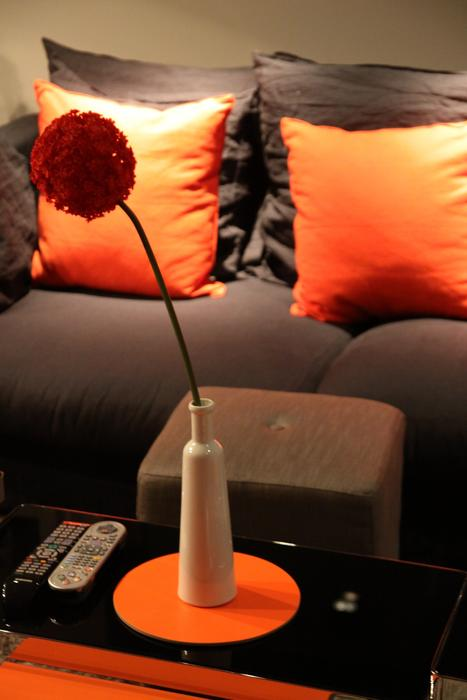 Déco salon marron et orange - Exemples d\'aménagements