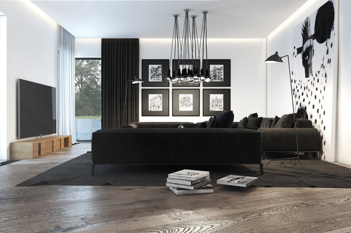 D co salon noir et blanc exemples d 39 am nagements for Deco salon design contemporain