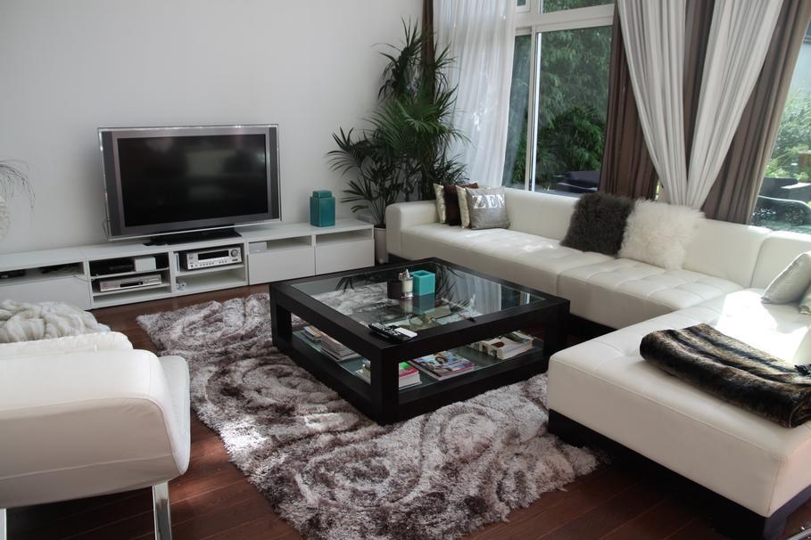 Déco salon noir et blanc turquoise - Exemples d\'aménagements