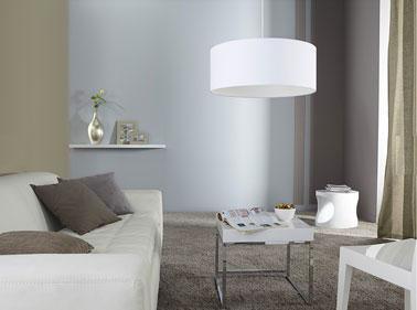 d co salon taupe et gris exemples d 39 am nagements. Black Bedroom Furniture Sets. Home Design Ideas
