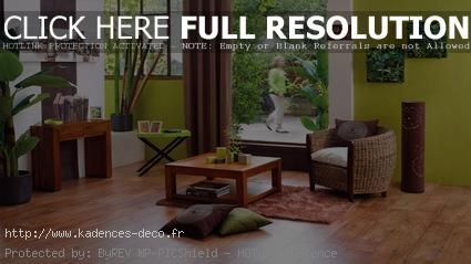 Deco Salon Zen Bambou Exemples D Amenagements