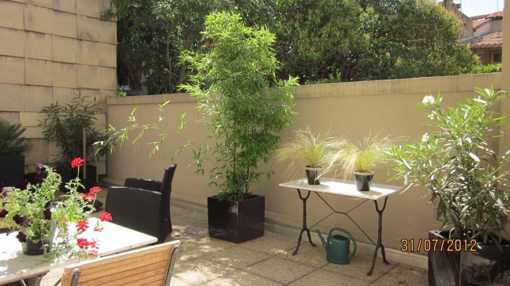 D co terrasse plein sud exemples d 39 am nagements - Arbuste pour terrasse plein soleil ...
