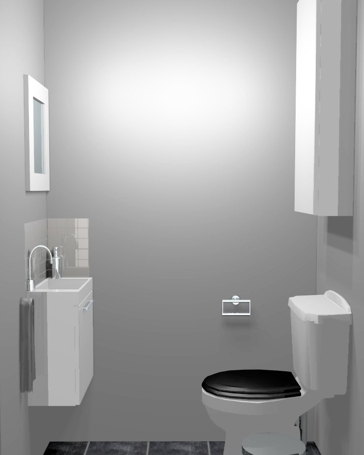 D co wc gris exemples d 39 am nagements for Peinture toilettes blanc