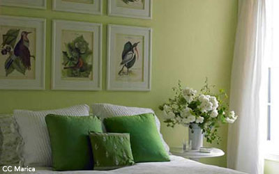Awesome Chambre Vert Amande Et Beige Contemporary - Design Trends ...