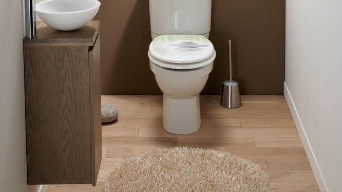 D coration grand wc exemples d 39 am nagements for Peinture toilettes zen