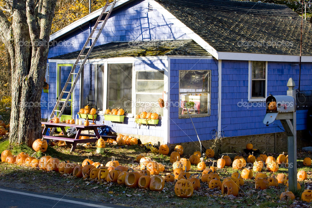 Halloween Decoration Usa