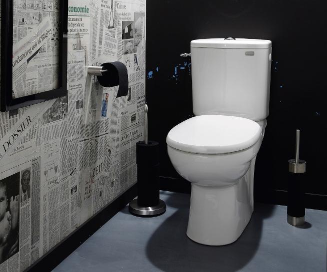 D coration interieur toilettes for Interieur wc suspendu