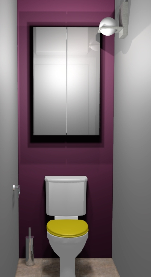 D coration interieur toilettes exemples d 39 am nagements for Deco wc bleu