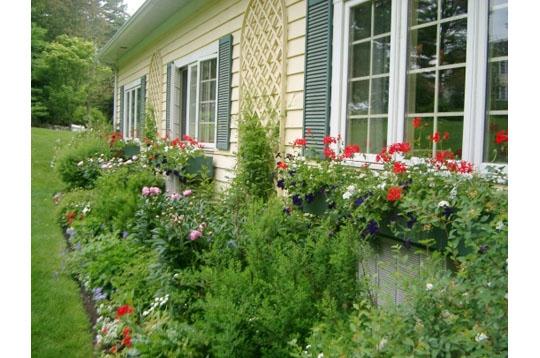 D coration jardin a l 39 anglaise exemples d 39 am nagements for Jardin a l anglaise photos