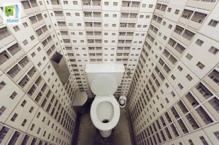 décoration insolite toilettes