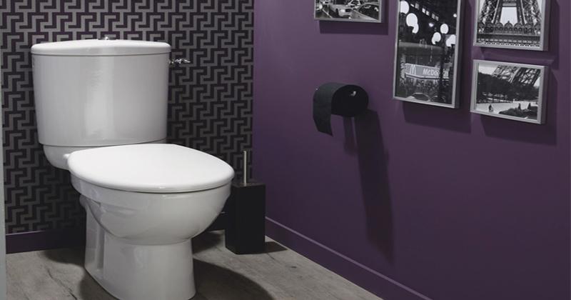 modèle décoration zen pour wc